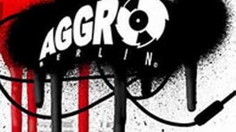 Screenshot Homepage: Logo Aggro