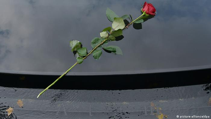 A rose floats on the water at the Memorial for Sinti and Roma Photo: Rainer Jensen/dpa +++(c) dpa - Bildfunk+++