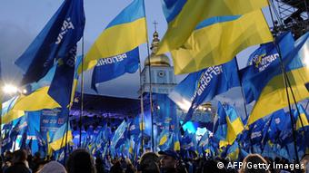Supporters of Ukrainian pro-government Party of the Regions wave flags AFP PHOTO / VIKTOR DRACHEV (Photo credit should read VIKTOR DRACHEV/AFP/Getty Images)