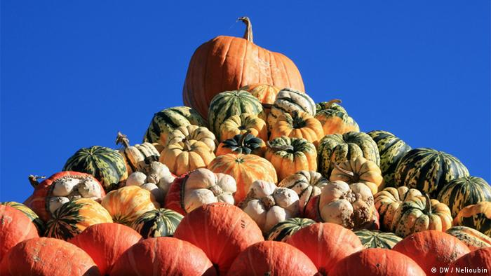 A pyramid of different types of pumpkins piled on top of each other