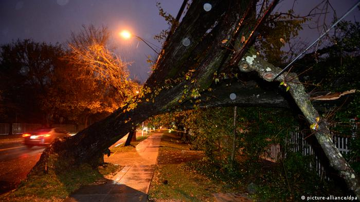 epa03452119 An uprooted tree lays on power lines as a result of Hurricane Sandy, in Washington DC, USA, 30 October 2012. Despite dodging the full force of the storm the federal government, as well as transportation networks and local schools remain closed today. EPA/MICHAEL REYNOLDS +++(c) dpa - Bildfunk+++