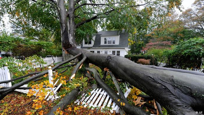 A fallen tree lies atop a smashed, white-picket fence in the front yard of a house. (Photo:Kathy Kmonicek/AP/dapd)