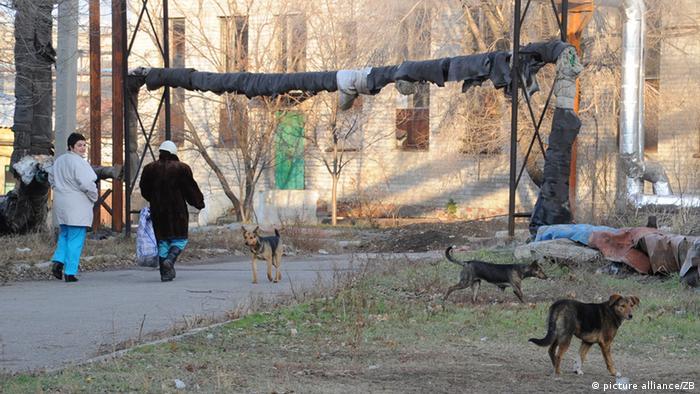 На одном из задних дворов Донецка