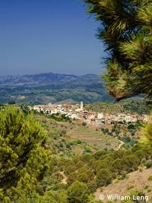 Der spanische Wein-Ort Bellmunt in der für den Export bedeutenden Region Katalonien (Foto: William Long)