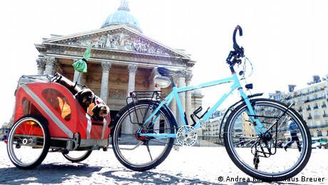 Schön gemütlich im Fahrrad-Anhänger fuhren die Hunde Sammy und Momo neuen Welten entgegen.