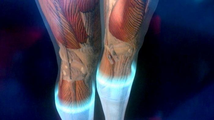 28.11.2012 fit und gesund TIPP Reisethrombose