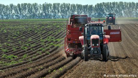 Kartoffelerntemaschine auf Kartoffelacker in Thüringen
