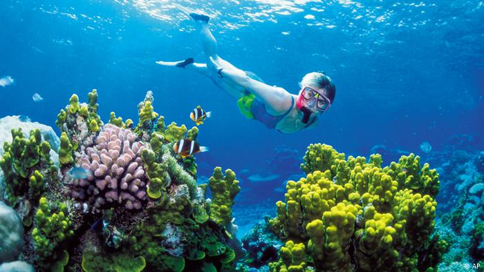 The Great Barrier Reef. Photo: Tourism Queensland/AP