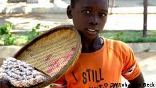 Kind verkauft Nüsse auf der Straße in Tete in Nordwest-Mosambik. *** Ort: Region Guro, Provinz Manica, Mosambik Fotograf: Johannes Beck Datum: 11. November 2012
