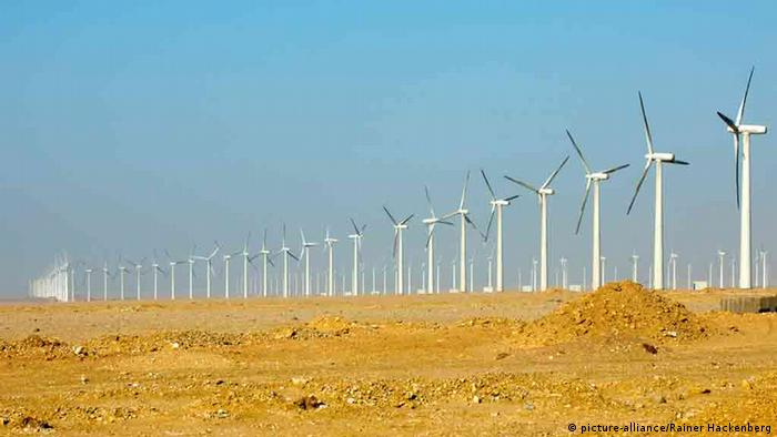 A line of wind turbines in Egypt line the horizon.