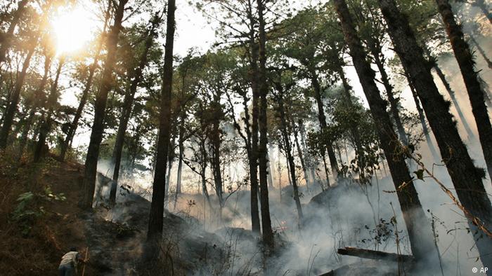 Waldbrand Honduras