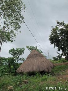 Die Kommune Mambia in Kindia, Guinea-Conakry (Foto: Bob Barry/DW)