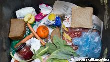 ARCHIV - ILLUSTRATION - Lebensmittel liegen in einer Mülltonne in Frankfurt (Oder)(Foto vom 13.03.2012). Verbraucher in Bayern werfen jedes Jahr 65 Kilo Lebensmittel weg Foto: Patrick Pleul/dpa +++(c) dpa - Bildfunk+++