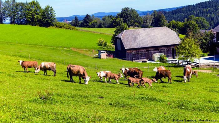 C mo evitar el xodo del campo a la ciudad sociedad - Casas rurales en el campo ...