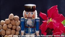 Sachaufnahmen Weihnachten Geschenke SA0505 Weihnachtsstern Nußknacker Nüsse