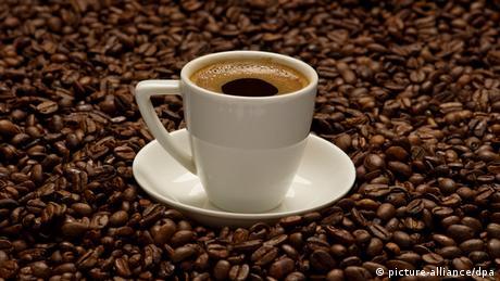 Kafeja – Energji për njeriun dhe plagë për mjedisin