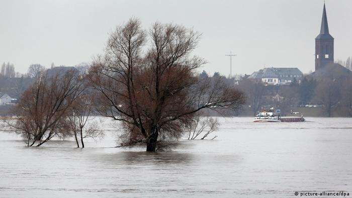 High water levels in the river Rhine make ship navigation difficult Photo: Martin Gerten/dpa +++(c) dpa - Bildfunk+++