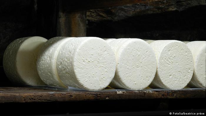 Quarkproduktion Käse Frischkäse