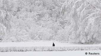 A man walks past snowy trees in a park, with the air temperature at about minus 8 degrees Celsius (17.6 degrees Fahrenheit), in Russia's southern city of Stavropol, December 24, 2012. Russia endures an abnormally cold winter, the most severe in more than 70 years, according to local media. REUTERS/Eduard Korniyenko (RUSSIA - Tags: ENVIRONMENT SOCIETY TPX IMAGES OF THE DAY)