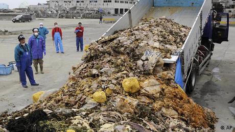 Resíduos de frutos do mar