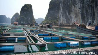 http://www.flickr.com/photos/phswien/5660092277/ A fish farm