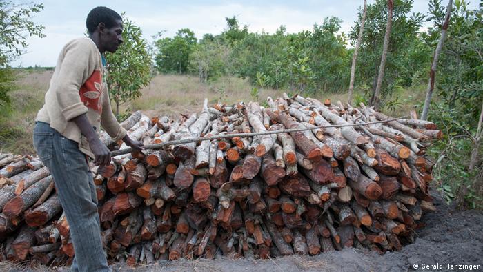 Bildergalerie Kohletransporteure und Kohleproduktion in Mosambik