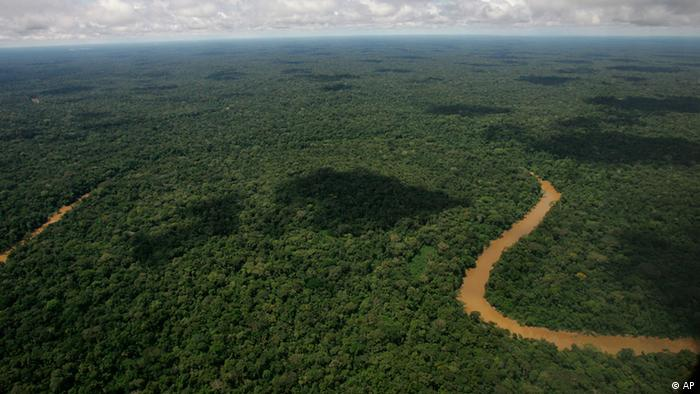 An aerial view of the Yasuni National Park, in Ecuador's northeastern jungle. The jungle area, which holds close to 1 billion barrels of crude, is part of a UNESCO Biosphere Reserve. Some environmentalists say the reserve has more varieties of plant life than the United States and Canada combined.