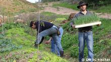 Landwirtschaftsprojekt Biovilla in Portugal