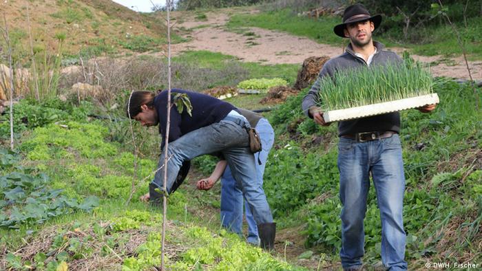 Landwirtschaftsprojekt Biovilla in Portugal (Foto: DW/Hilke Fischer)
