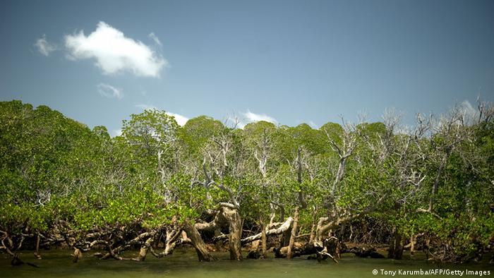 Insel Lamu Kenia