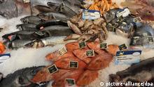 Fisch Fischtheke Supermarkt Auslage
