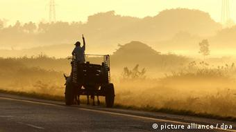 A peasant with his ox cart working in the western town of Pinar del Rio, Cuba Copyright: ALEJANDRO ERNESTO/EPA/DPA