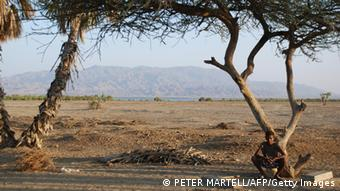 A shepherd rests in the shade in the Eritrean Red Sea village of Hirgigo (Photo: PETER MARTELL/AFP/Getty Images)