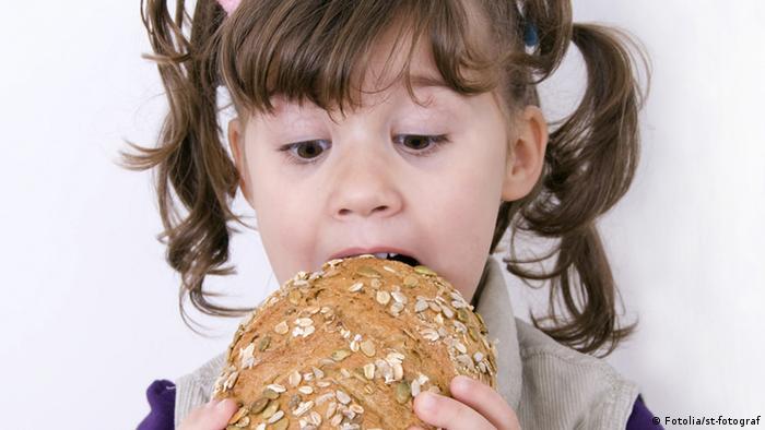 El HB4 podría llegar a nuestro pan.