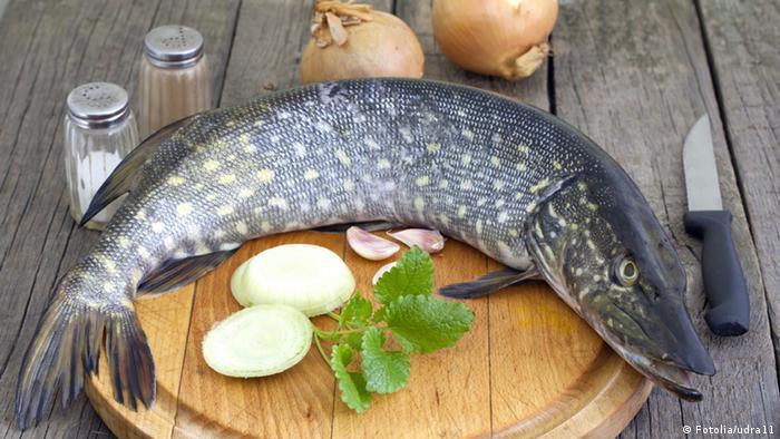 Gericht Fischessen Symbolbild (Fotolia/udra11)