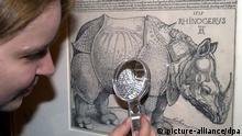 Holzschnitt Das Rhinozeros Albrecht Dürer