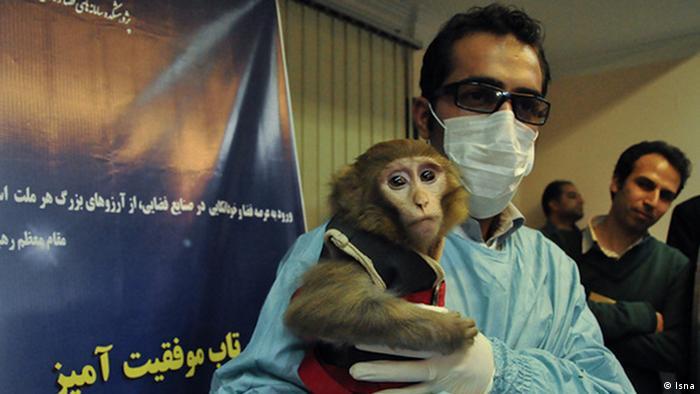 Bildergalerie Iran Affe im Weltraum