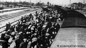 Ein Häftlingstransport aus Ungarn trifft im Lager Auschwitz ein ((c) dpa - Bildfunk+++