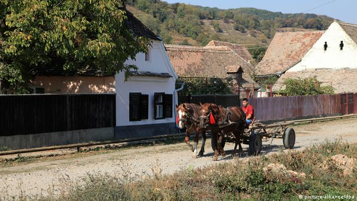Un țăran în Transilvania