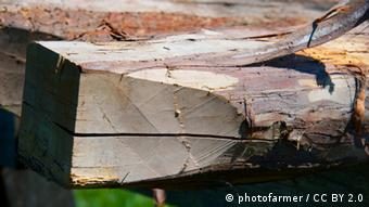A wooden beam (Foto: photofarmer / CC BY 2.0)
