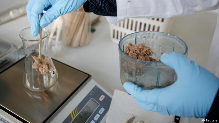 Minced meat is prepared for weighing at a laboratory by a person wearing blue medical gloves. (Photo: REUTERS/Ina Fassbender)
