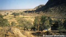 Trockensavanne bei Waza-Nationalpark (Foto: dpa) / Eingestellt von wa