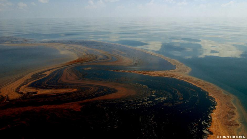 gulf oil spill Audubon in the gulf in a region still recovering from the largest offshore oil spill in history, audubon is committed to restoration.