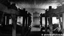 Themenbilder Gulag