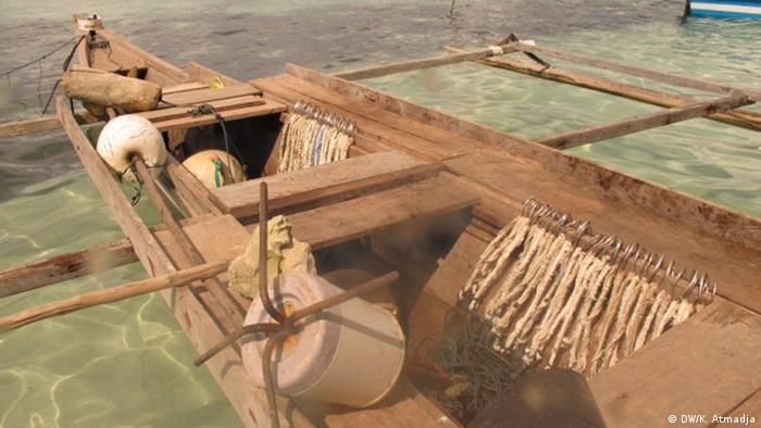 Indonesien - Handel mit Haifischflossen