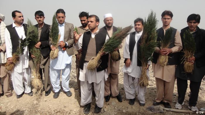 Afghanen pflanzen Bäume (Foto: DW)