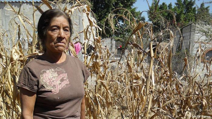 Apolonia Álvarez, a farm owner in rural Mexico