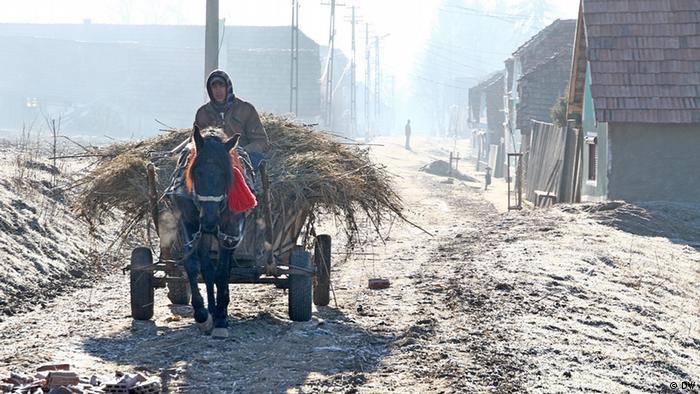 Ein Pferdekaren transportiert Heu in Stejaris in Rumänien. (Foto: DW)