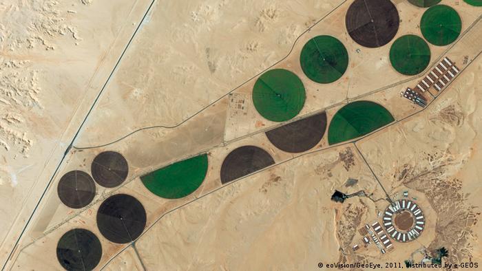 Runde Kreisbewässerungsfelder wirken wie Oasen in der Wüste Saudi-Arabiens (Foto: eoVision/DigitalGlobe)