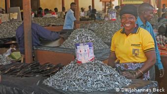Fische aus dem Malawi-See Markt von Lichinga